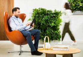 Groene roomdivider voor een gezondbinnenklimaat op kantoor
